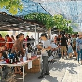 H2O Vegetal, Fair of natural wine at El Pinell de Brai