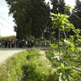 Itinerari guiat a Viladecans