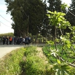 Itinerario Guiado Camino de Miramar en Viladecans