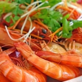 Gastronomic Days of the Shrimp in Salou