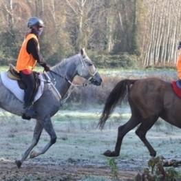 Equitation à Santa Susanna