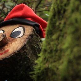 Tiones el Bosque Mágico del Rukimon