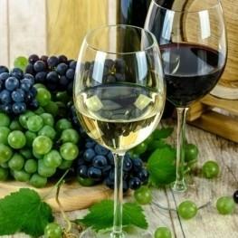 Visita Guiada al CIARGA al refugio del Serral + Cata vinos Bodega…