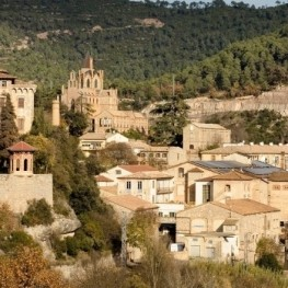 Visits to the Interpretation Center of Colonia Pons