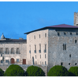 Guided tours in Santa Coloma de Queralt