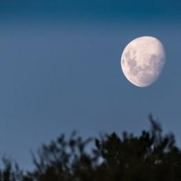 Visites guidées au clair de lune à Hostalric