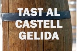 Cata en el Castillo de Gelida con visita a la Masía Can Pasqual