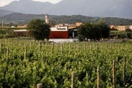 Wine tourism activities in La Vinyeta in Mollet de Peralada