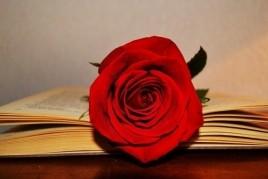 Fira del llibre de Sant Jordi a Martorell
