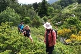 Boscos de les salines, Alt Empordà Sea Walking 2020