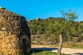 Caminada de la Pedra Seca a Torrebesses