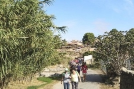 Caminata Popular contra el Cáncer en Torrebesses