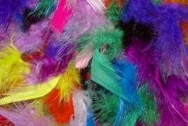 Carnaval en Tortosa