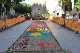 Carpet of flowers and received from the Llama del Canigó in…