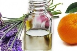 Course on aromatherapy in the Museum File Tomás Balvey de Cardedeu