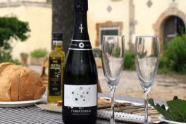 Descobreix la floració de la vinya al celler Covides