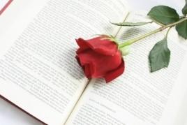 Diada de Sant Jordi a Prats de Lluçanès