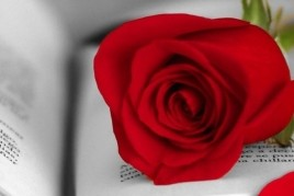 Diada de Sant Jordi a Salou