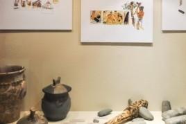 Exposición en el Museo Josep Castellà