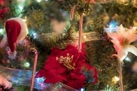 Fête de Noël à Sant Miquel de Fluvià