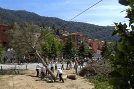 Festa del Pi i dels Sants Patrons a Figaró-Montmany