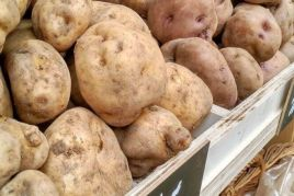 Catalonia Potato and Truffle Fair in Solsona