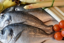Gastronomic Days of Fish of the Lonja and Rice