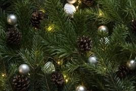 Mostra d'arbres de Nadal a Sant Miquel de Fluvià