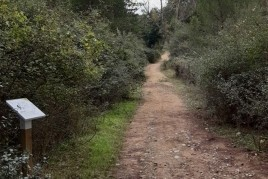 Guided walk of Well-being and Silence in Sant Celoni