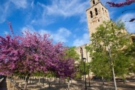 Guided walks through the parks and gardens of Sant Cugat del…