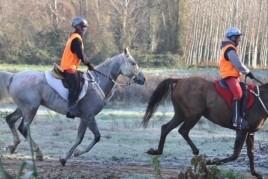 Horse Riding in Santa Susanna