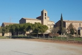 Verbena de San Juan in Valls de Torroella