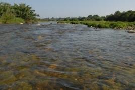 Ruta guiada por el río Francolí