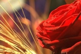 Sant Jordi à Súria