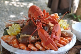 Try the Masnou