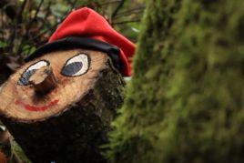 Tions al Bosc Màgic del Rukimon