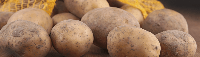 Fair of Potato and Truffle of Catalonia in Solsona