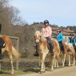 Granja de cavalls i ponis, eQuillet
