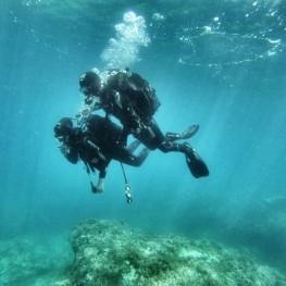 Medaqua activitats aquàtiques