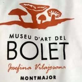 Museu del Bolet i Bar de Baix