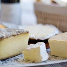 Rencontrez tous les fromages de Catalogne