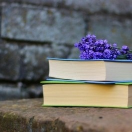 Get carried away by the culture: literary femturisme