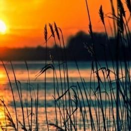 The sunrise and sunset