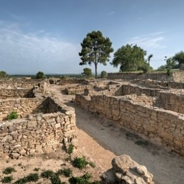 Return to our Iberian past