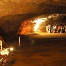 A trip to prehistory