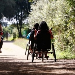 Greenways accessible to all