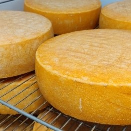 Three award-winning cheese factories that we can not miss Llobregat…