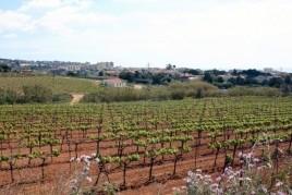 Benestar gastronòmic al Vallès Oriental