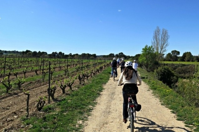 Bike & Taste - Self-Guided Route with Conventional Bike through the Penedès (Bikemotions Bike Tour 4)
