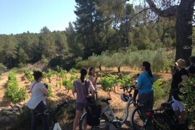 Excursión en bicicleta eléctrica